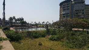 for rent, durban point waterfront, commercial