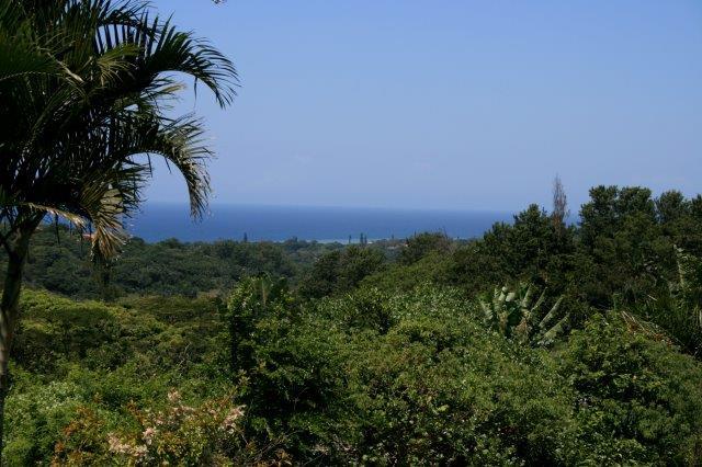 South Coast land for sale