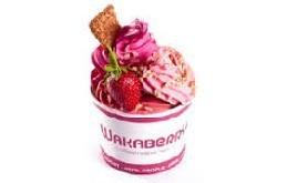 Wakaberry Frozen Yoghurt For Sale
