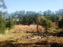 Residential Land On Auction - Hillcrest