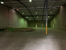 1067m2 Warehouse To Let in Briardene