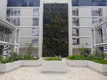 Apartment to let Sibaya